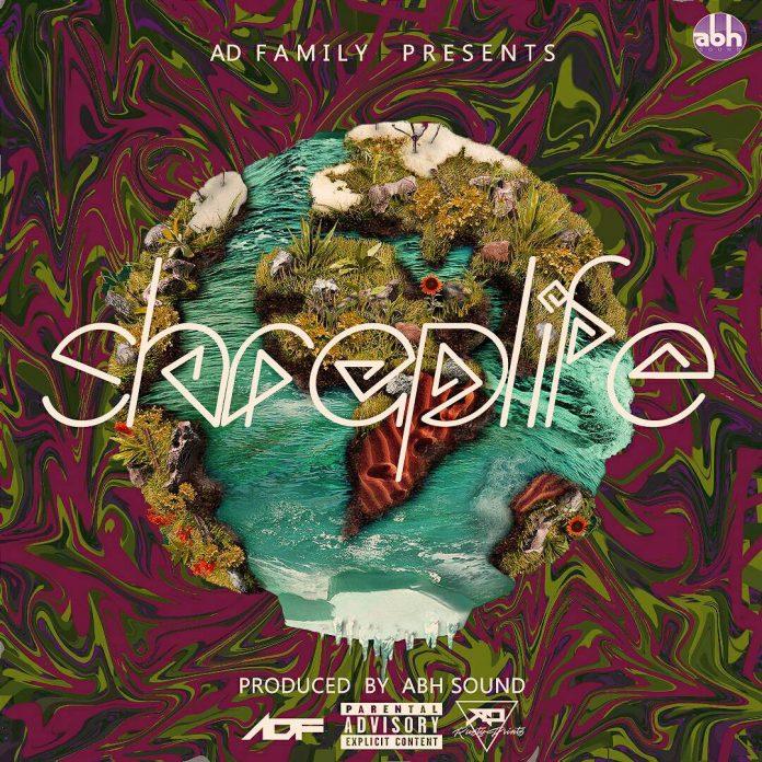 SHRAPLIFE - AD FAMILY album cover